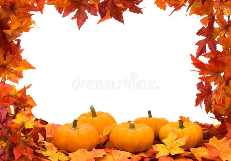 Kleurrijk van de Daling Frame Als achtergrond stock afbeeldingen