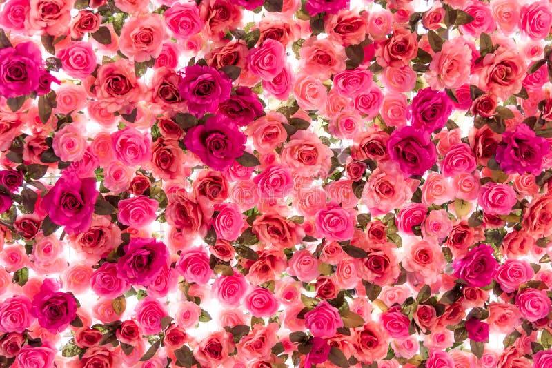 Kleurrijk van rozen op witte achtergrond worden geïsoleerd die royalty-vrije stock afbeeldingen