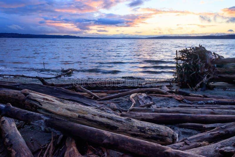 Kleurrijk zonsondergangwolken en drijfhout stock foto's