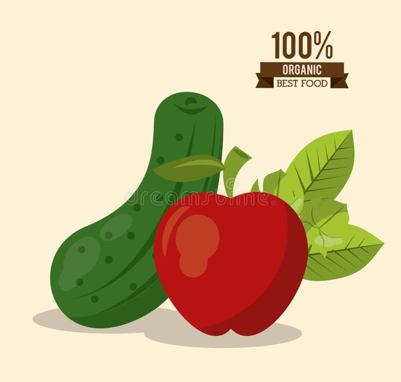 Kleurrijke affiche van organisch beste voedsel met komkommer en appel stock illustratie