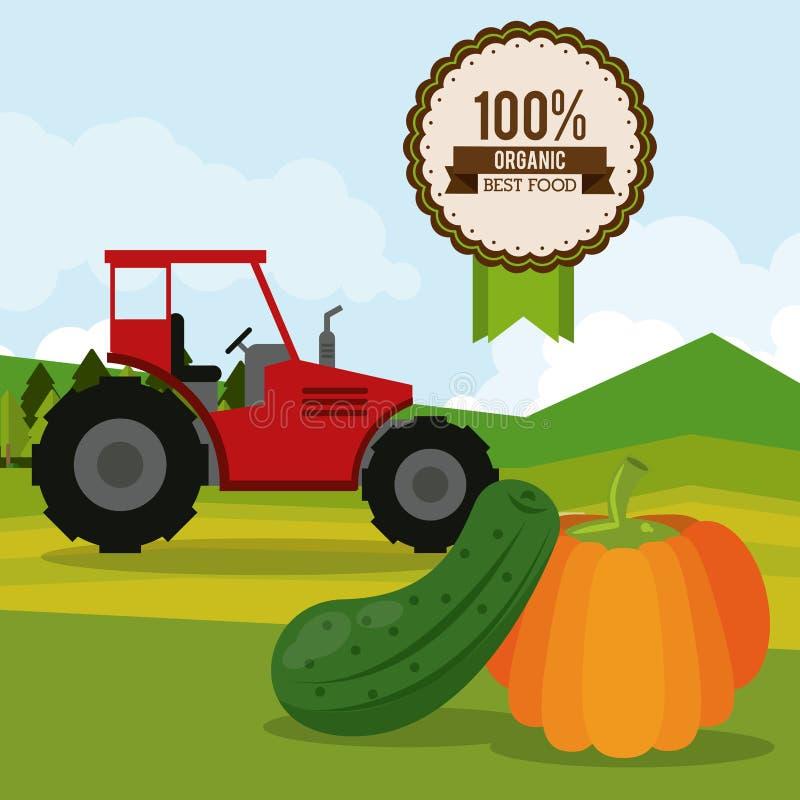 Kleurrijke affiche van organisch beste voedsel met tractor in openluchtlandschap met komkommer en pompoen stock illustratie