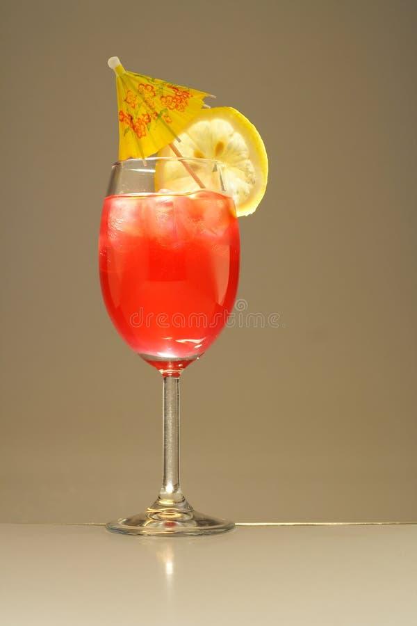 Kleurrijke alcoholische cocktail stock foto