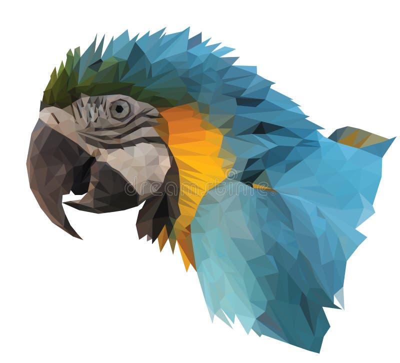 Kleurrijke arapapegaai ` s vector illustratie