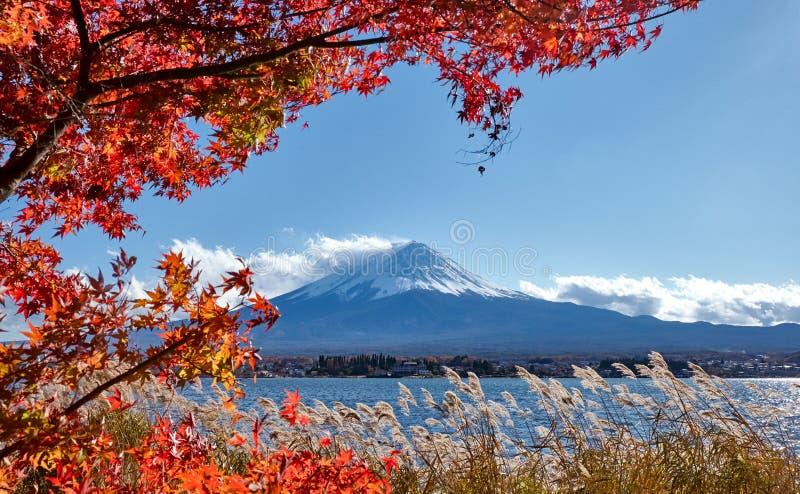 Kleurrijke Autumn Season en de Berg Fuji met Sneeuw dekten piek en rode bladeren bij meer Kawaguchiko zijn af één van de beste pl royalty-vrije stock afbeeldingen
