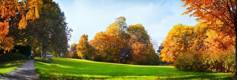 Kleurrijke Autumn Trees And Blue Cloudy-Hemel - Seizoengebonden Park zonder Enige Mensen stock foto's