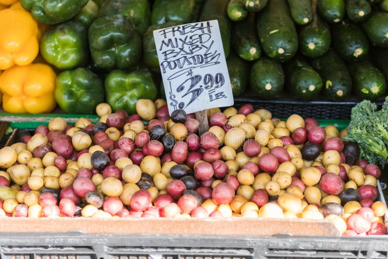 Kleurrijke babyaardappels en andere groenten bij een box bij de Markt van de Snoekenplaats in Seattle royalty-vrije stock foto's