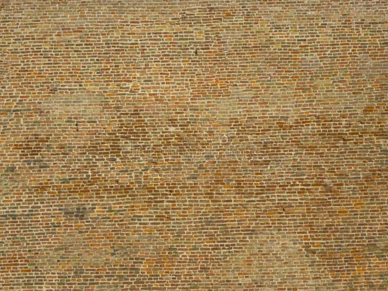 Kleurrijke bakstenen muur royalty-vrije stock afbeeldingen