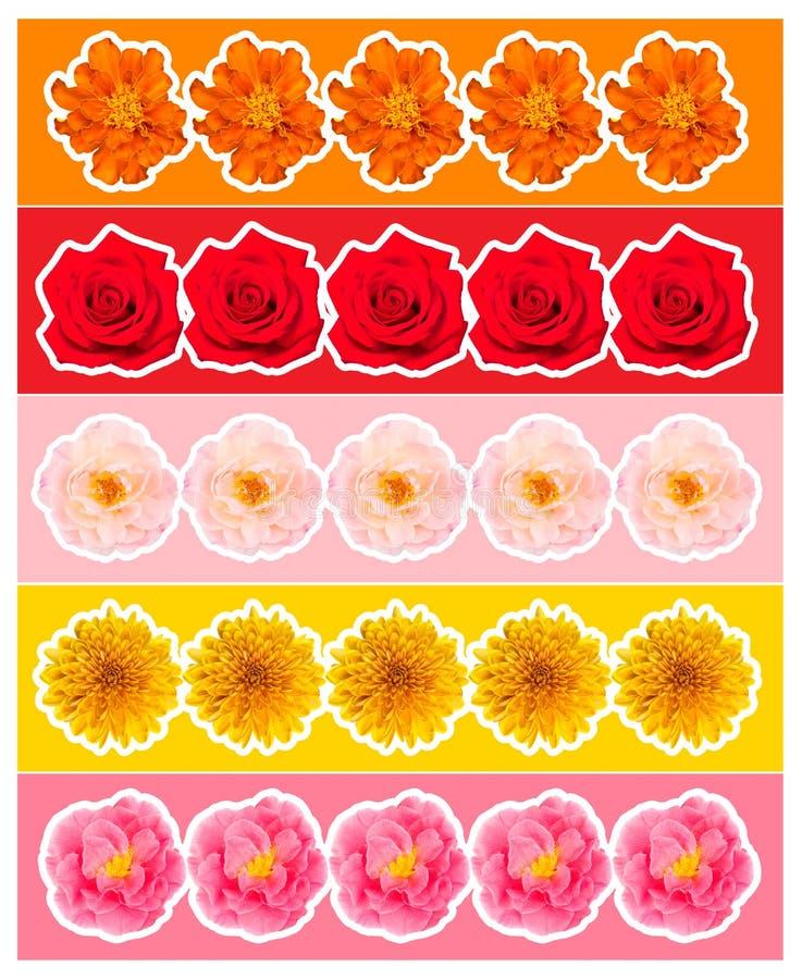 Kleurrijke banners met bloemen royalty-vrije illustratie