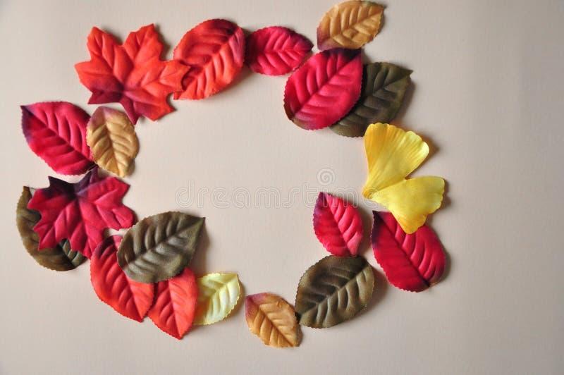 Kleurrijke bladeren in cirkelvorm met ruimte voor tekst stock foto