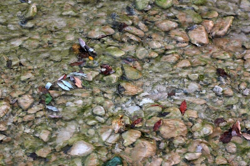 Kleurrijke bladeren die in een bergbeek drijven met stenen Mooie artistieke achtergrond stock fotografie