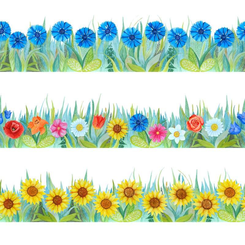 Kleurrijke bloemen naadloze grenzen Heldere achtergrond - gras en bloemen royalty-vrije stock fotografie