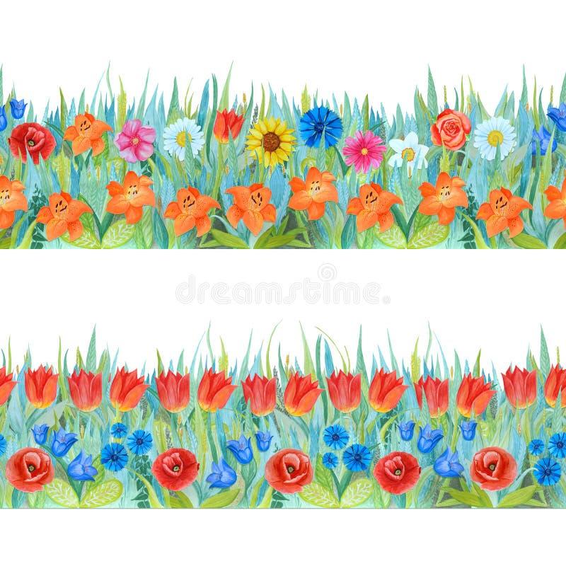 Kleurrijke bloemen naadloze grenzen Heldere achtergrond - gras en bloemen Hand-drawn waterverfillustratie royalty-vrije illustratie