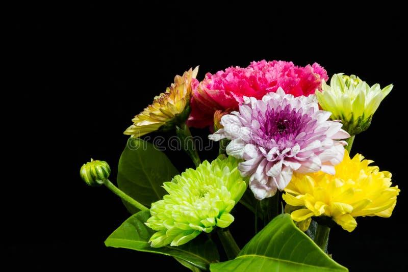 Kleurrijke bloemen op zwarte achtergrond stock afbeeldingen