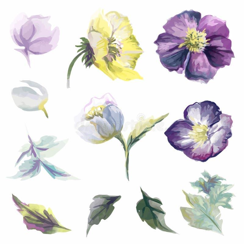 Kleurrijke bloemeninzameling met bladeren en bloemen stock illustratie