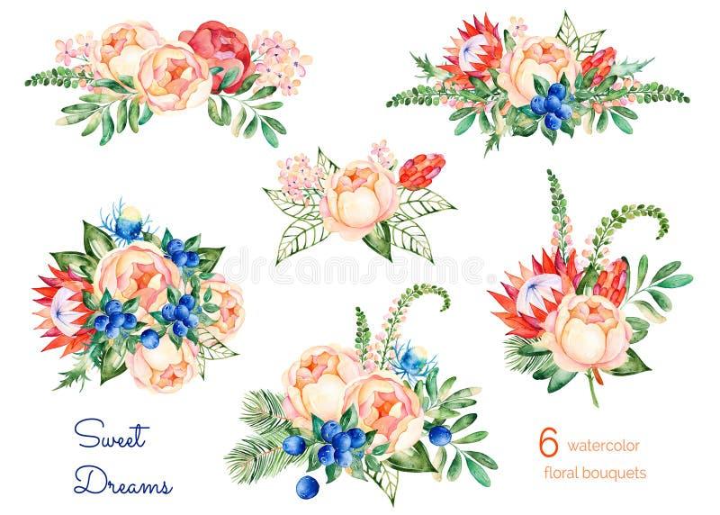 Kleurrijke bloemeninzameling met rozen, bloemen, bladeren, protea, blauwe bessen, nette tak, eryngium stock illustratie