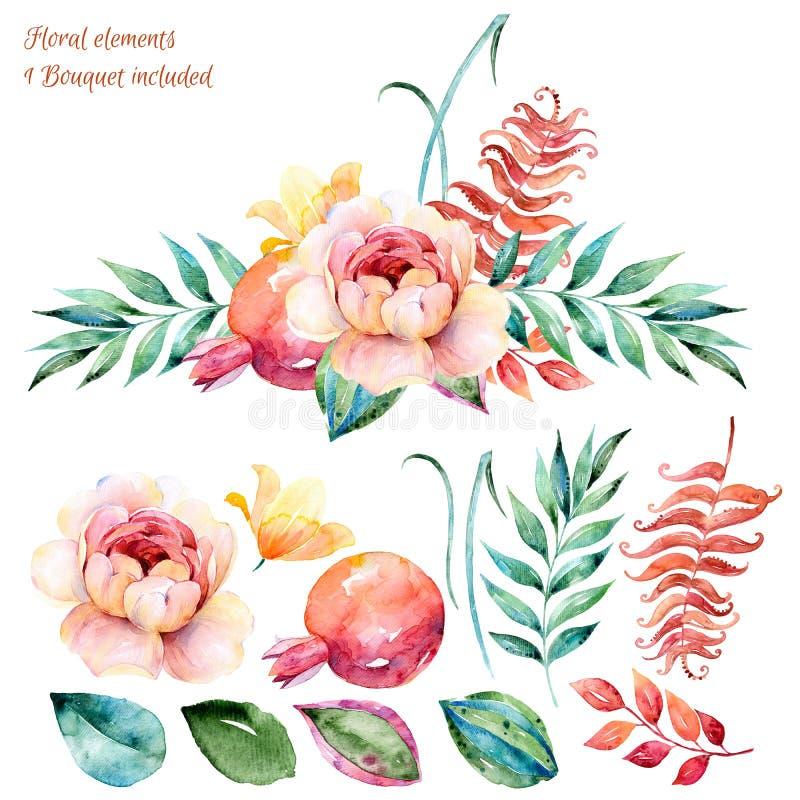 Kleurrijke Bloemenreeks Kleurrijke wit-purpere bloemeninzameling met bladeren en rozen, die waterverf trekken royalty-vrije illustratie