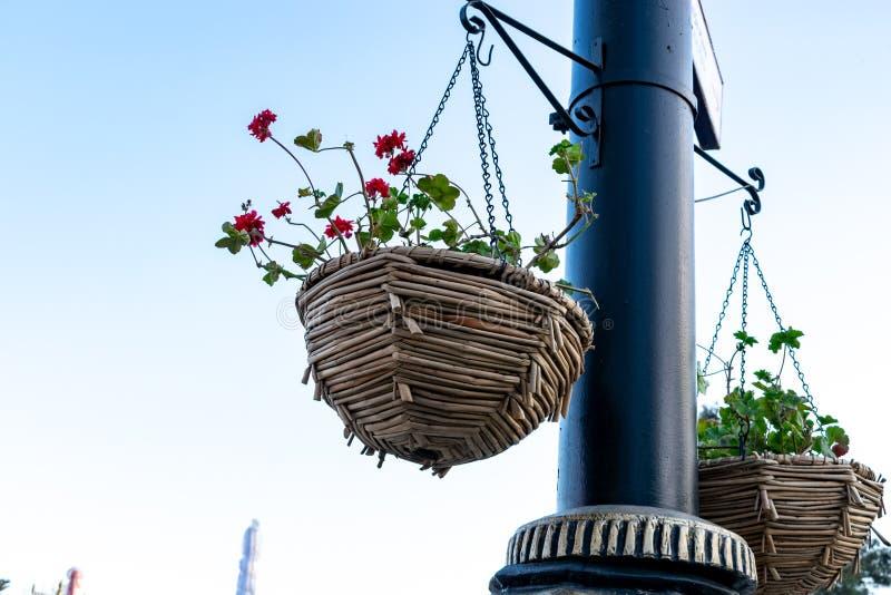 Kleurrijke bloempotten die lamppost naast het standpunt op de hemel hangen royalty-vrije stock foto's