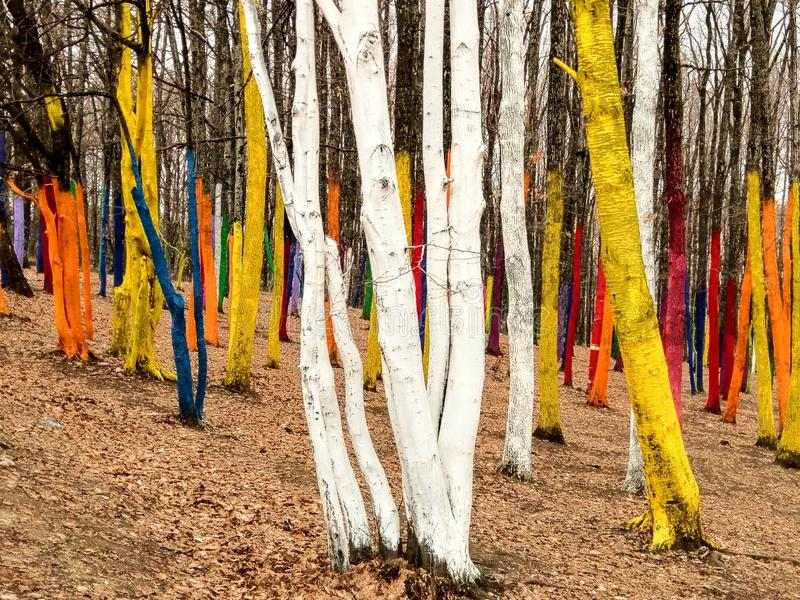 Kleurrijke Bomen stock afbeeldingen