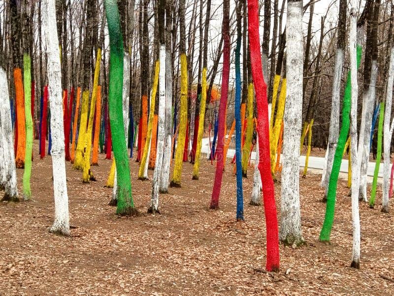 Kleurrijke Bomen royalty-vrije stock afbeeldingen