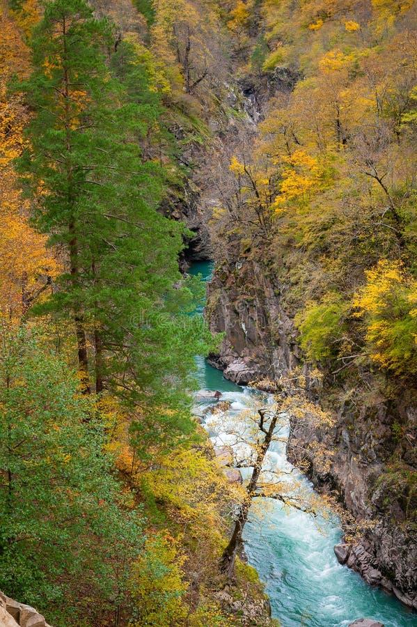 Kleurrijke canion van bergrivier in dalingsseizoen stock foto's