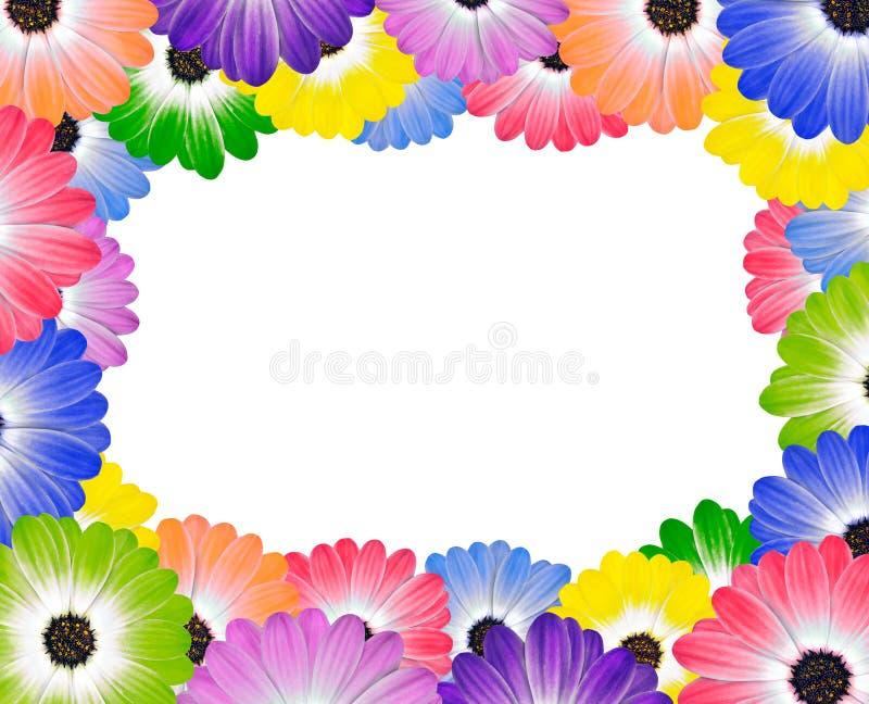 Kleurrijke Daisy Flowers rond Rand van Frame stock illustratie