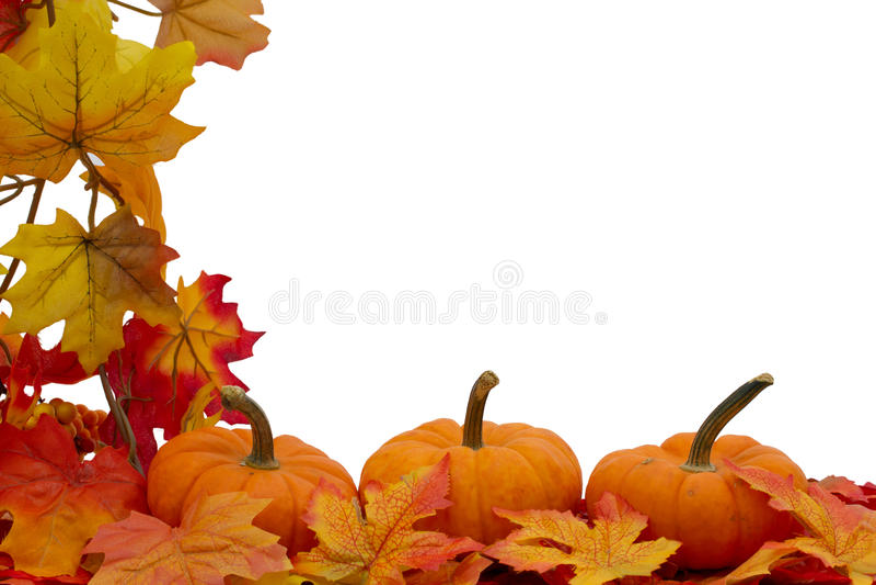 Kleurrijke Dalingsgrens stock foto's