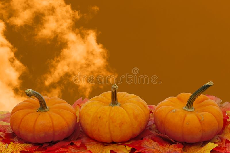 Kleurrijke Dalingsgrens in sinaasappel royalty-vrije stock foto