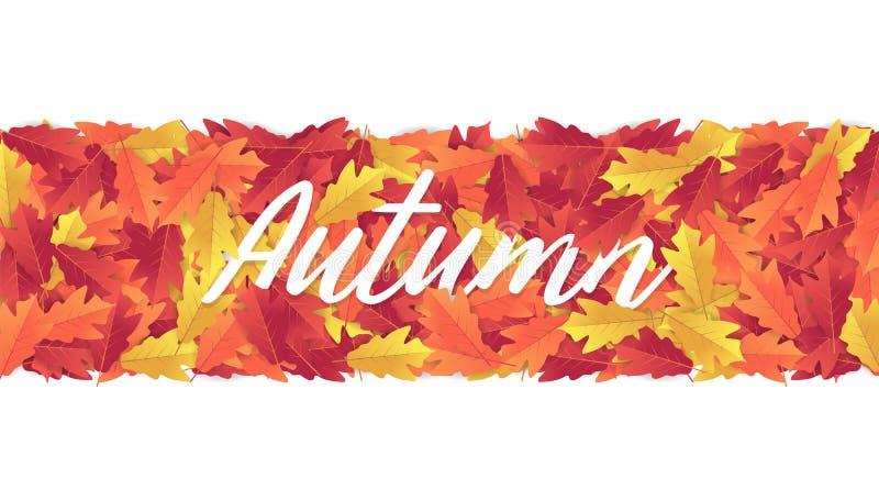 Kleurrijke de bannerachtergrond van de herfstbladeren vector illustratie