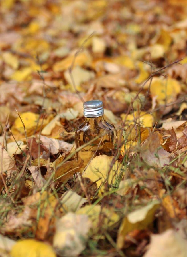 Kleurrijke de herfstachtergrond met daling royalty-vrije stock foto's