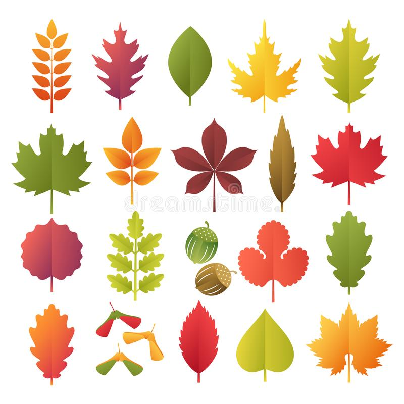 Kleurrijke de herfstbladeren geplaatst die op witte achtergrond worden geïsoleerd Het document sneed 3d vlakke stijl, vectorillus royalty-vrije illustratie