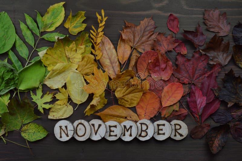 Kleurrijke de herfstbladeren met woord NOVEMBER royalty-vrije stock afbeelding