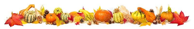 Kleurrijke de herfstdecoratie, extra breed formaat stock foto's