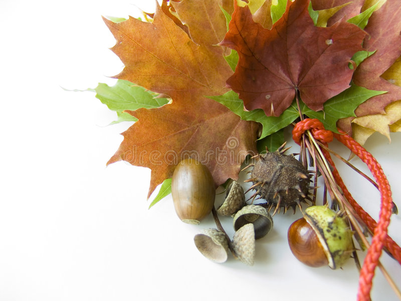 Kleurrijke de herfstgiften stock foto