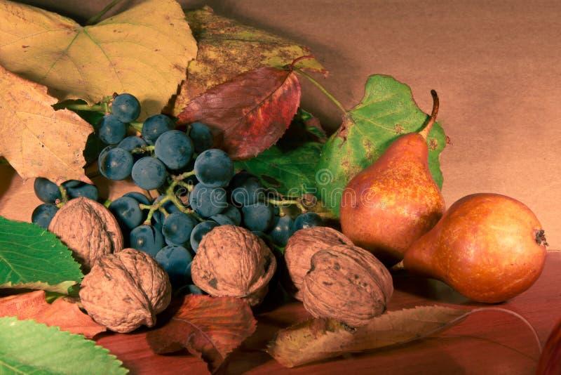 Kleurrijke de herfstoogst royalty-vrije stock afbeelding