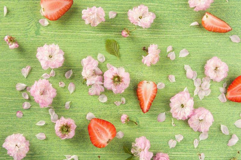 Kleurrijke de zomer of de lenteaardachtergrond De roze het het de amandelbloemen, knop, blad en bloemblaadje op groene houten nat royalty-vrije stock fotografie