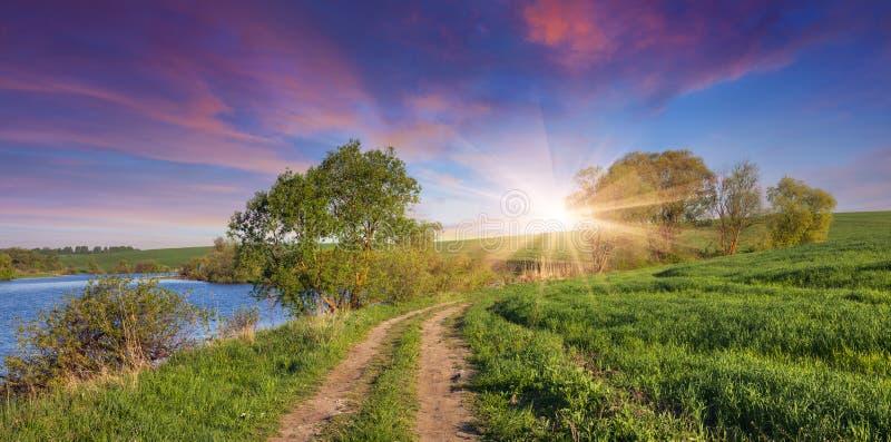 Kleurrijke de zomerzonsopgang met weg dichtbij meer stock fotografie