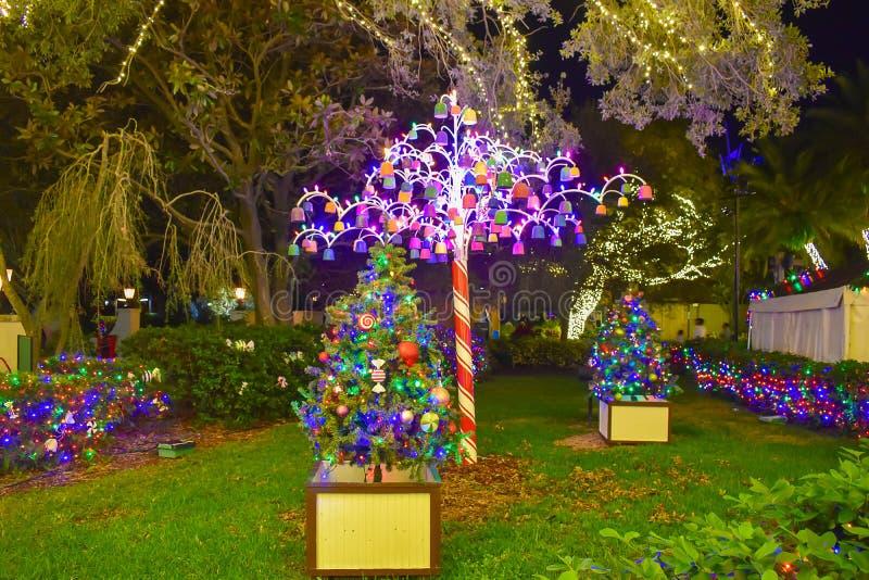 Kleurrijke en verlichte Kerstbomen bij Busch-Tuinen 2 royalty-vrije stock foto's