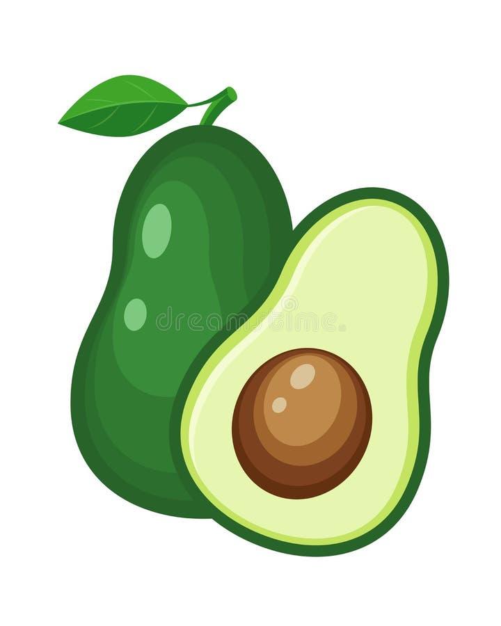 Kleurrijke gehele en halve avocado plantaardige vectorillustratie i stock illustratie