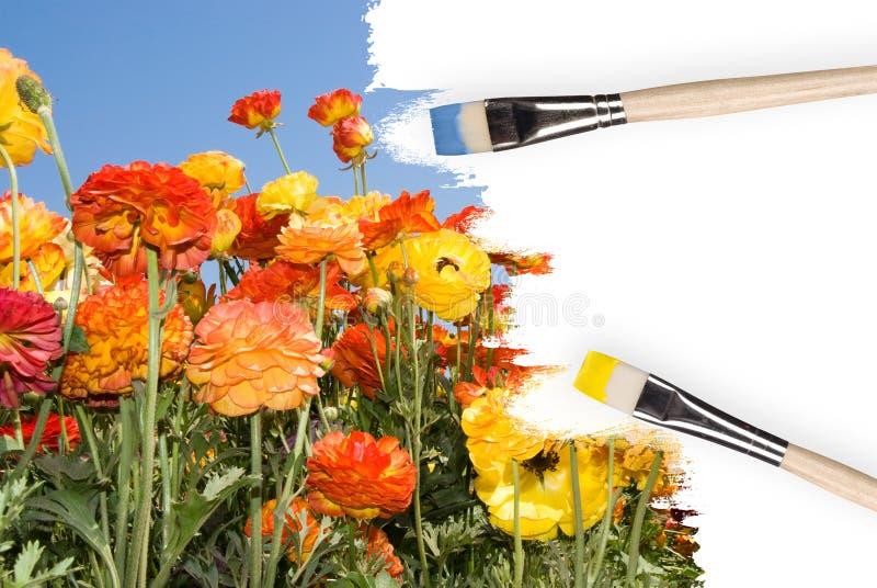Kleurrijke geschilderde wildflowers stock foto