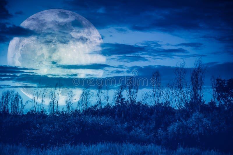 Kleurrijke hemel met donkere bewolkte en grote maan over silhouet van RT stock afbeeldingen