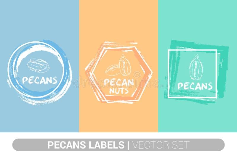 Kleurrijke het etiketreeks van pecannootnoten De ruwe organische vormen van het pecannotenkenteken Creatieve Nootmarkeringen Ruwe vector illustratie