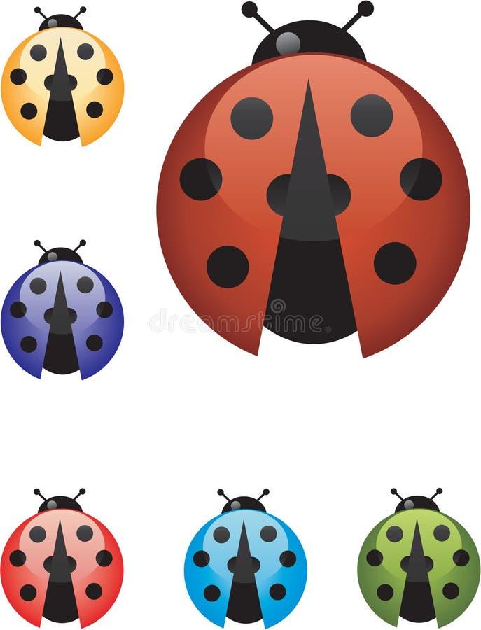Kleurrijke het insect van de dame stock afbeeldingen