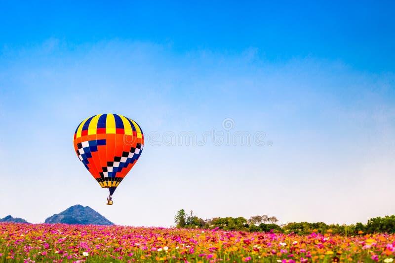 Kleurrijke hete luchtballon die over het gebied van de kosmosbloem vliegen royalty-vrije stock afbeeldingen