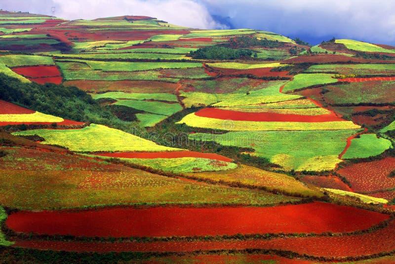 Kleurrijke heuvel royalty-vrije stock fotografie