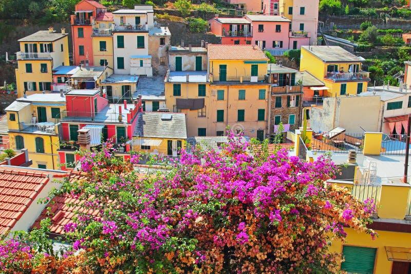 Kleurrijke huizen in Riomaggiore stock foto's