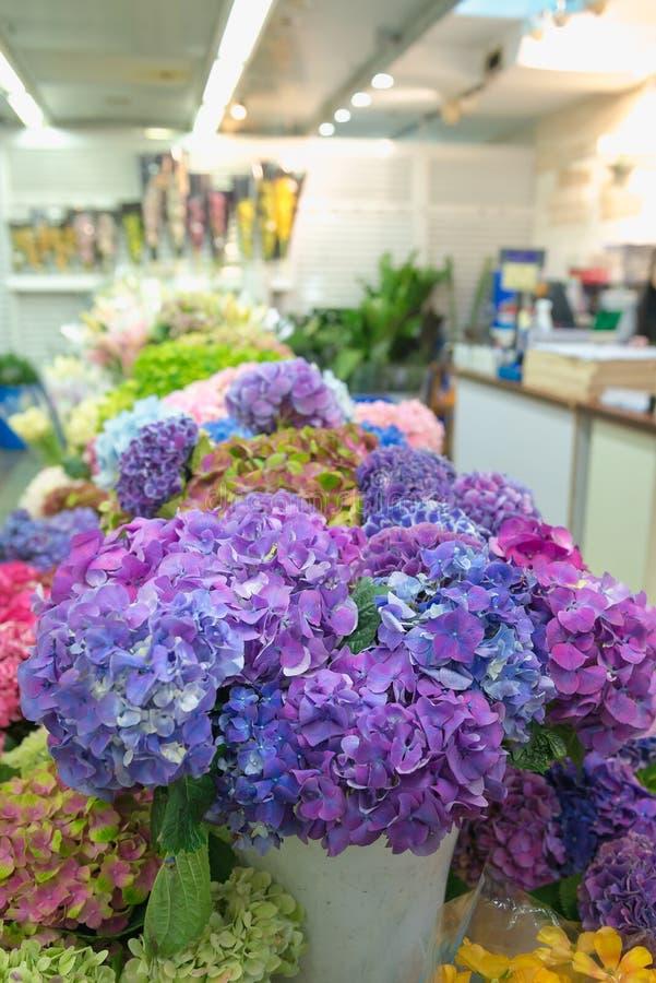 Kleurrijke hydrangea hortensia's in een winkel bij de Bloemmarkt in Hong Kong Bloem en bloem bedrijfsthema stock foto