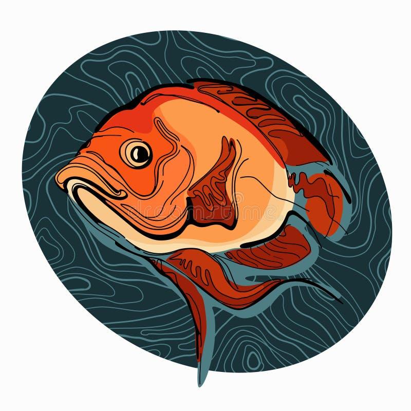Kleurrijke illustratie van vissen 2 royalty-vrije stock afbeeldingen