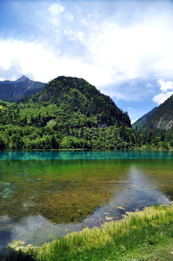 Kleurrijke meren op de bergen in Jiuzhaigou-Valleischoonheidsvlekje stock afbeeldingen