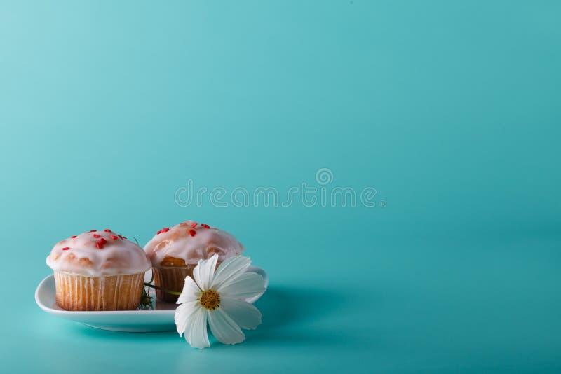 Kleurrijke muffin op schotel met bloem De achtergrond van de Aquakleur royalty-vrije stock fotografie