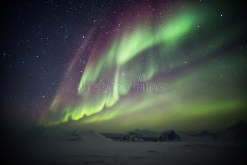 Kleurrijke Noordelijke Lichten boven de Noordpoolgletsjer en de bergen - Svalbard, Spitsbergen stock afbeelding